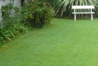Alawoona Lawn and turf 2