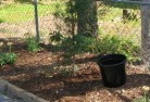 Alawoona Mulch 7